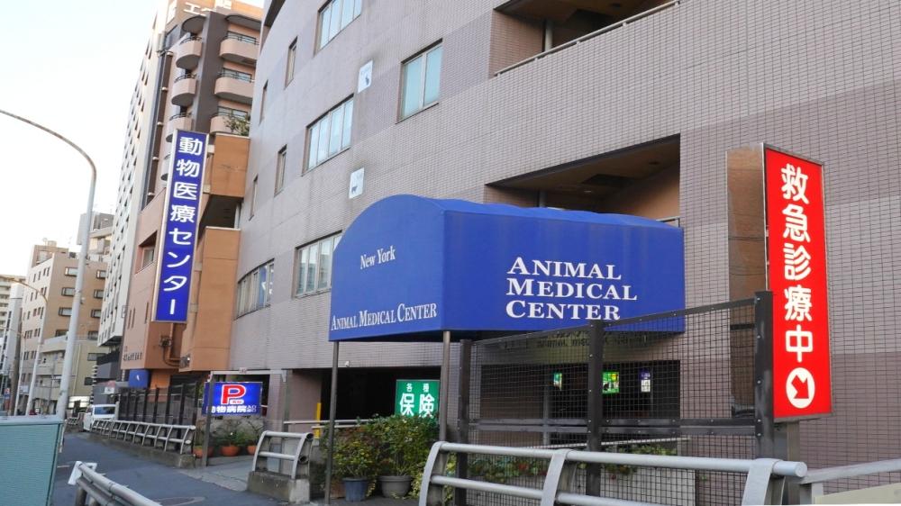 動物救急医療センター駐車場入り口